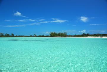 grand bahamas: